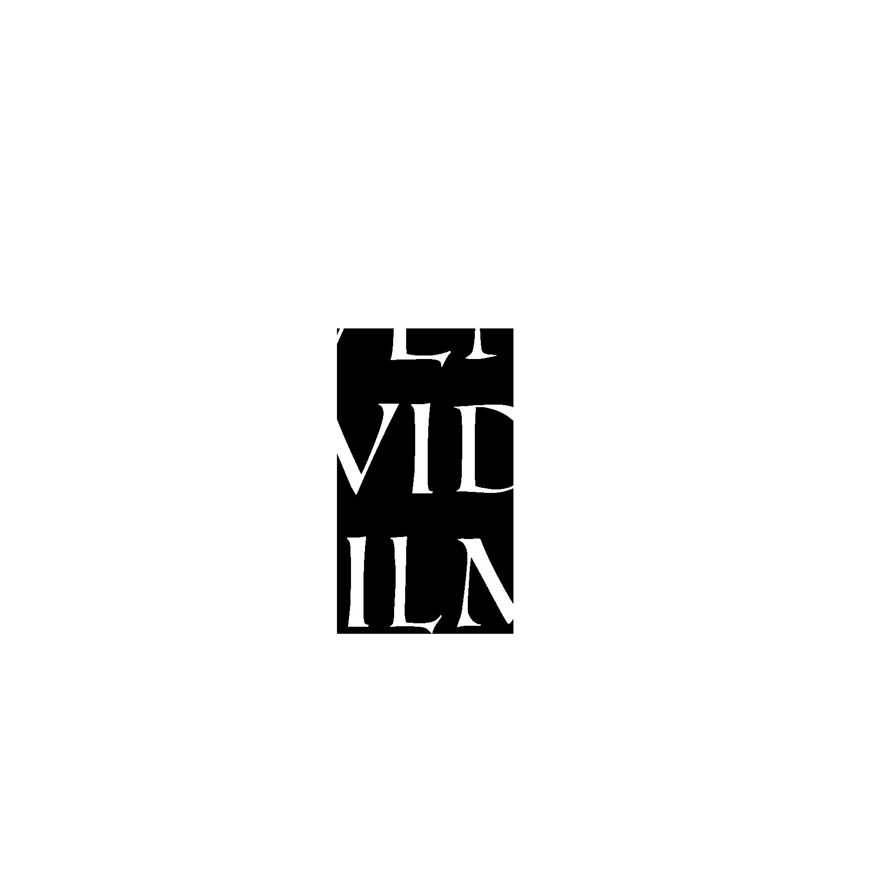 Veni Vidi Filmi